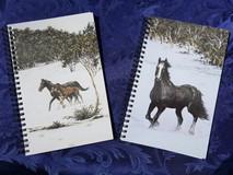 Notebooks $25.ea 22x14 x1cm (8.5x5.5 x .
