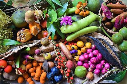 bush food 20.jpg