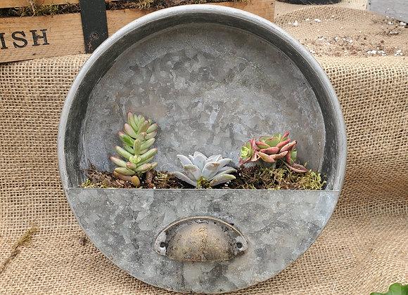 Round Succulent Planter, PL0087