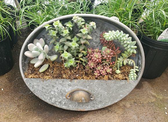 Oval Succulent Planter, PL0089