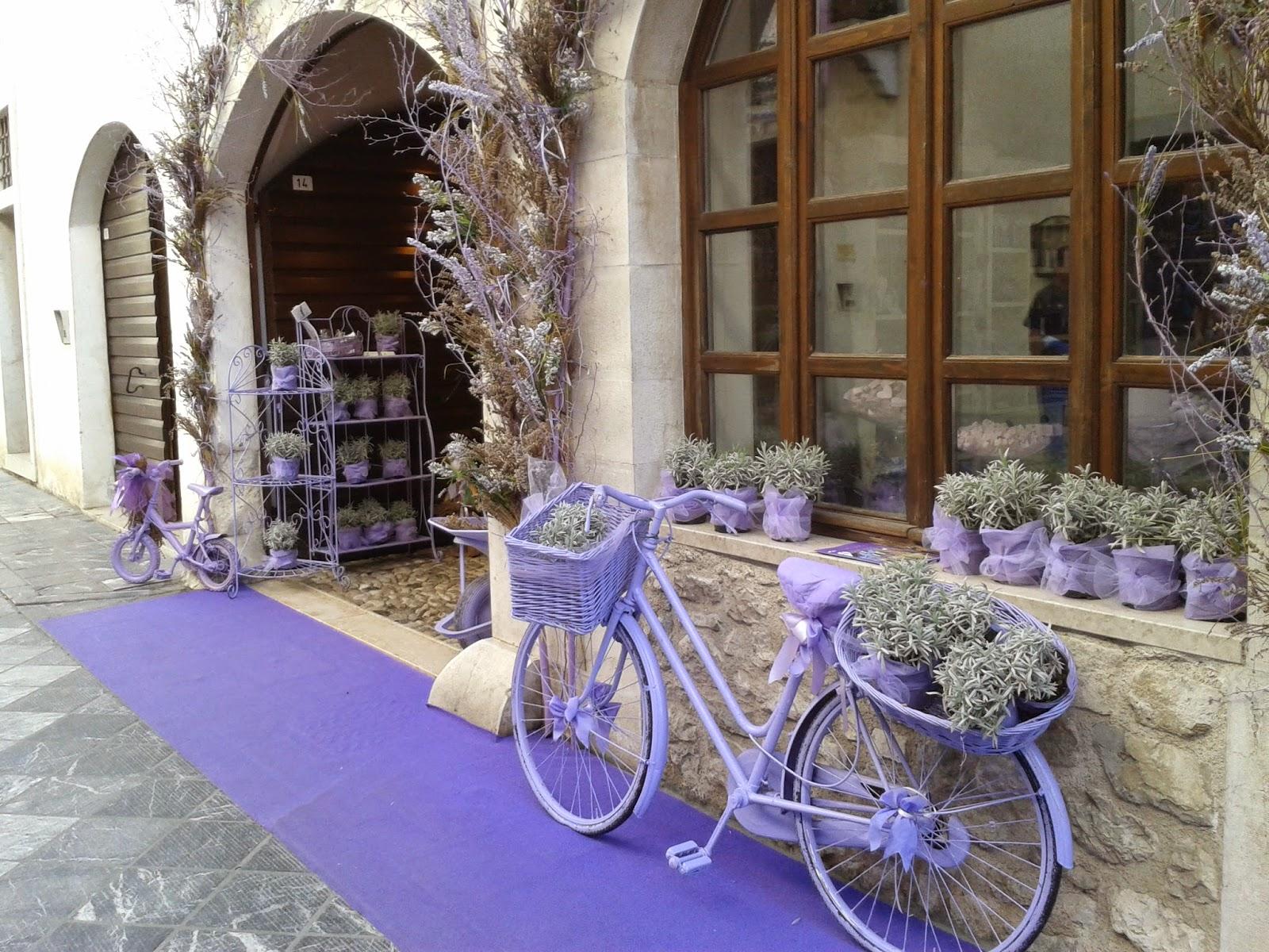 Explore Friuli, discover Friuli Venezia Giulia in northeastern Italy