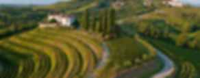 Discover the wines and food of Friuli