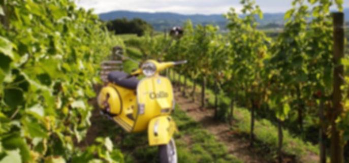 Rend a vespa in the Collio wine area