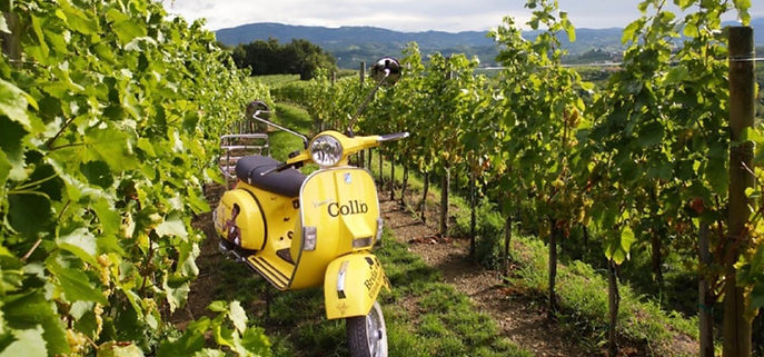 Rend a vespa in the Collio wine area