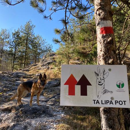 Ta Lipa Pot - de mooie wandeling