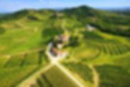 Collio wijngebied