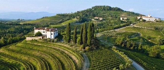 Proef de Friulaanse wijnen