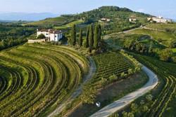 Wijngebied Collio