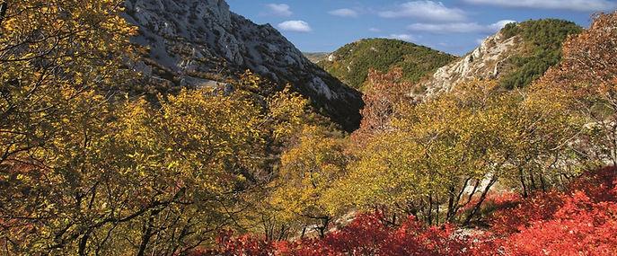 Val Rosandra Natuurgebied