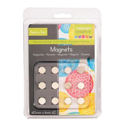 Vaessen 12 magneti rivestite Ni35 diametro 10 x 1 mm