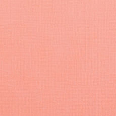 Florence- cartoncino texture 30,5 x30,5 DAHLIA
