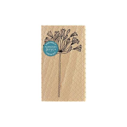 Florileges Design Timbro in legno Agapanthe