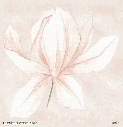 """Veroscrap - Foglio singolo collezione """" Magnolia """""""