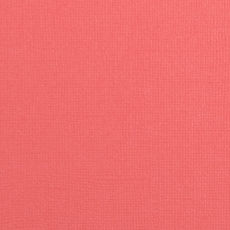 Florence- cartoncino texture 30,5 x30,5 ANEMONE