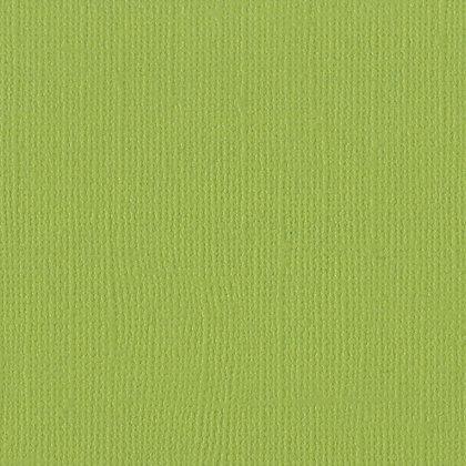 Bazzill  mono canvas 30,5 cm x 30,5 cm Parakeet