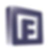 FEI Insurance logo