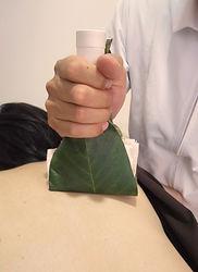 山梨県甲府市の小瀬スポーツ公園の近くで、指圧、マッサージ、鍼灸、温灸、びわの葉灸を行っている指圧鍼灸院Forestフォレストです。びわの葉灸、枇杷の葉、温灸。