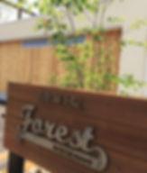 山梨県甲府市の小瀬スポーツ公園の近くで、指圧、マッサージ、鍼灸、温灸、びわの葉灸を行っている指圧鍼灸院Forestフォレストです。肩こり、腰痛、首こり、頭痛、、がn筋肉疲労、リラックス、眼精疲労、