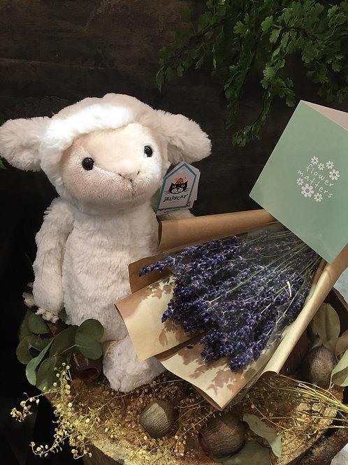 Fleecy Lamb