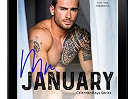 Review: Mr January by Nicole S. Goodin