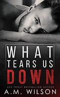 What Tears Us Down AM Wilson - E-Cover.jpg