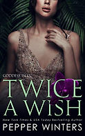 Twice a Wish.jpg