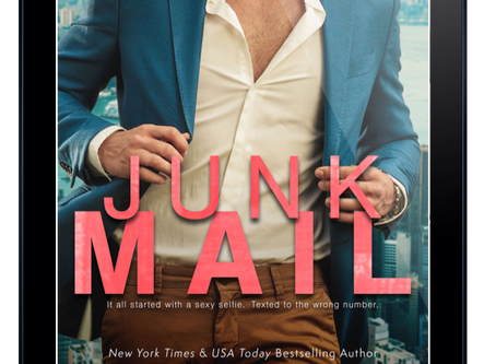 Excerpt - Junk Mail by Kendall Ryan
