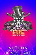 Blow My Fuse.jpg