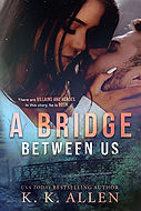 A Bridge Between Us.jpg