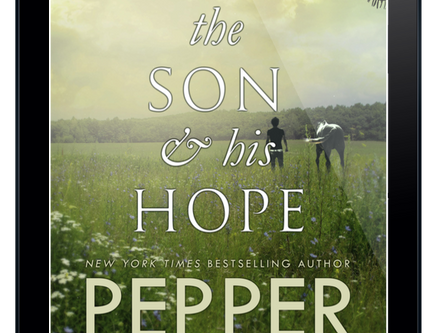 REVIEW + EXCERPT: The Son & His Hope by Pepper Winters