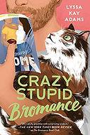 Crazy Stupid Bromance.jpg