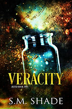 Veracity-ebook-cover.jpg