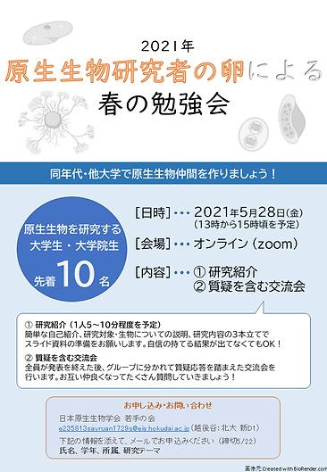 2021春の勉強会ポスター.png