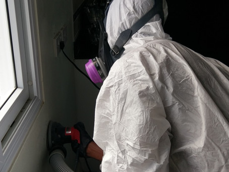 Choosing the right company for your Mold Remediation Job
