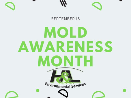 H&L Environmental Services Limited Mold Awareness Month Launch