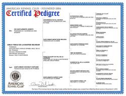 Emile's Certified Pedigree