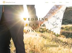 Site Wedding Planner Concept