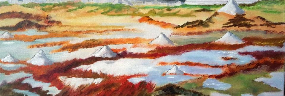Peinture Marais salants - Batz s/mer