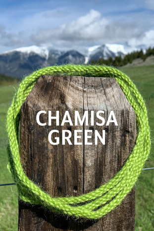 CHAMISA GREEN.jpg