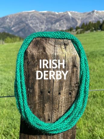 IRISH DERBY.jpg