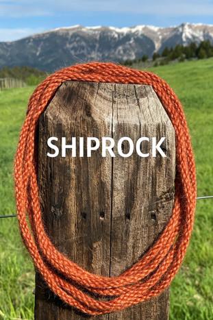 SHIPROCK.jpg