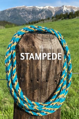 STAMPEDE.jpg