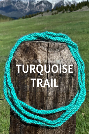 TURQUOISE TRAIL.jpg