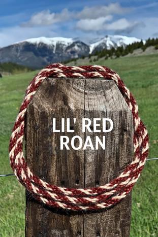 LIL' RED ROAN.jpg