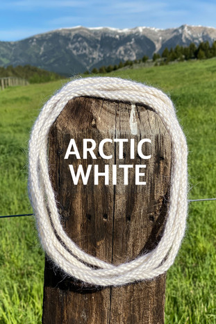 ARCTIC WHITE.jpg