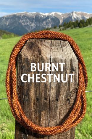 BURNT CHESTNUT.jpg