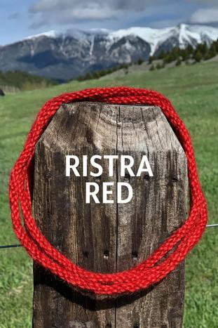 RISTRA RED.jpg