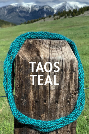 TAOS TEAL.jpg