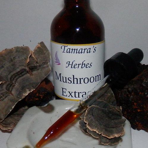 Mushroom Blend Tincture