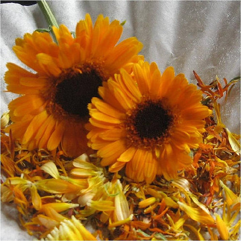 Dried Calendula Officinalis